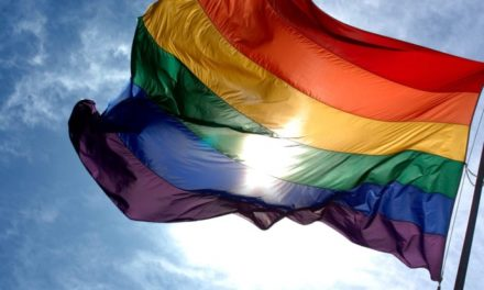 Public reaction to appointment of Blaženka Divjak for minister of education